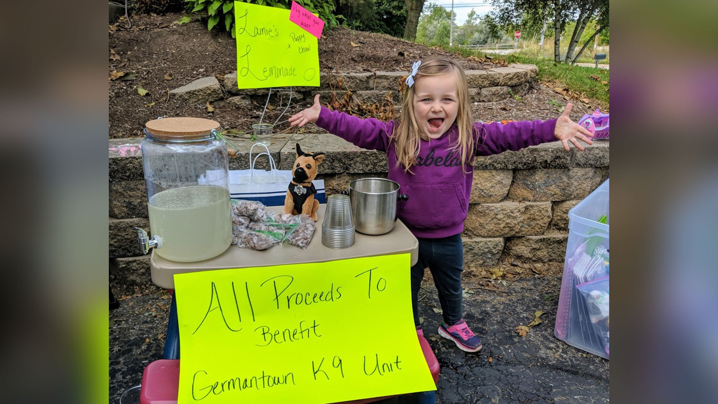 picture of girl at lemonade stand