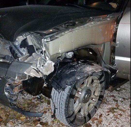 Car vs. deer collision