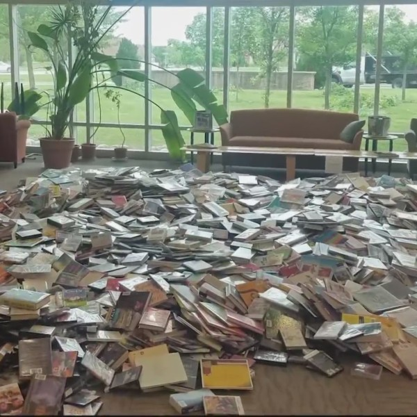 Picture of lots of library books on floor