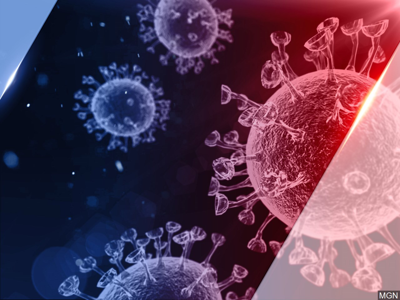 Graphic showing coronavirus rendering