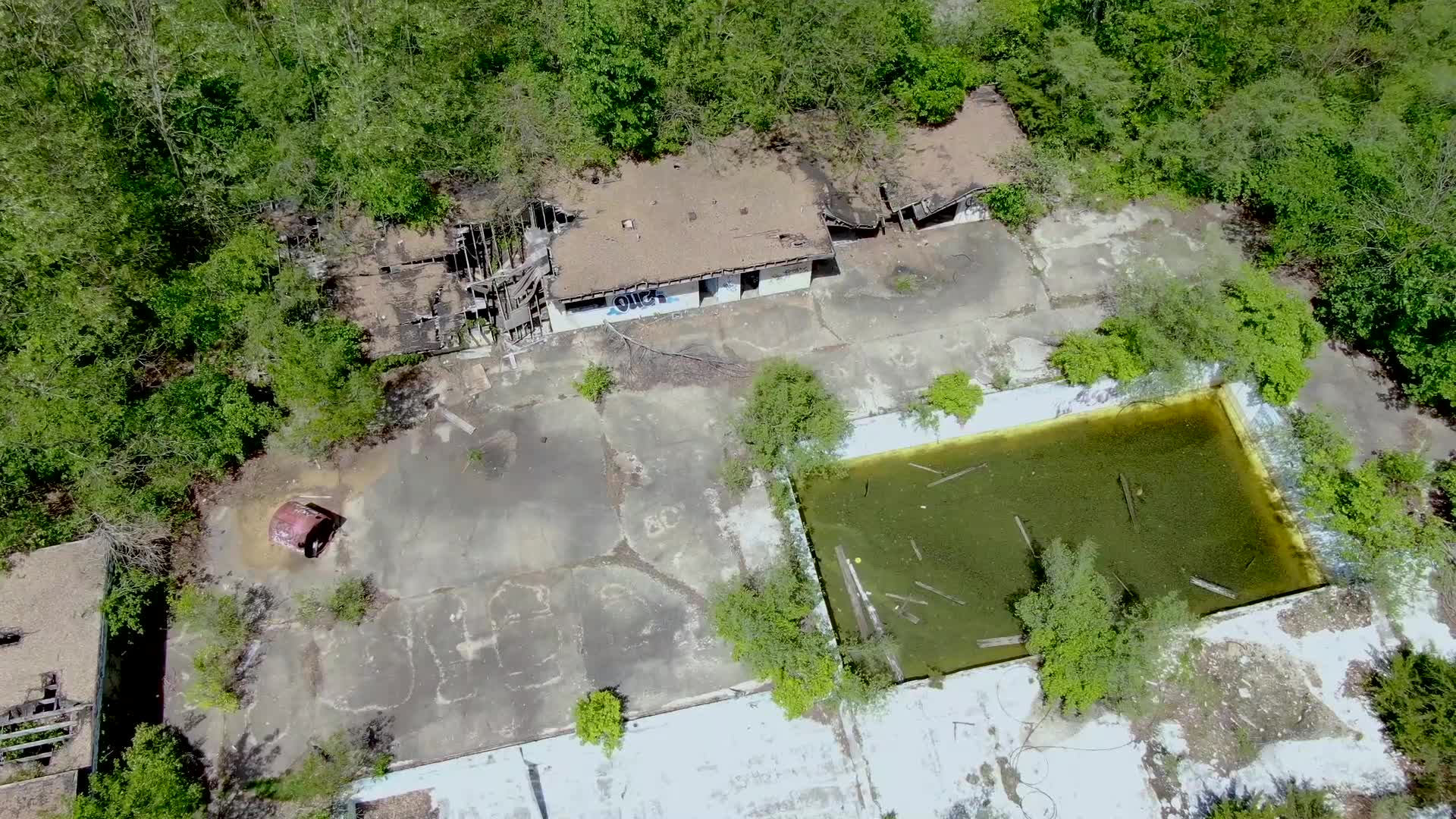 Picture of destroyed building, pool filled with old green water