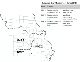 Picture of Bear Management Zones