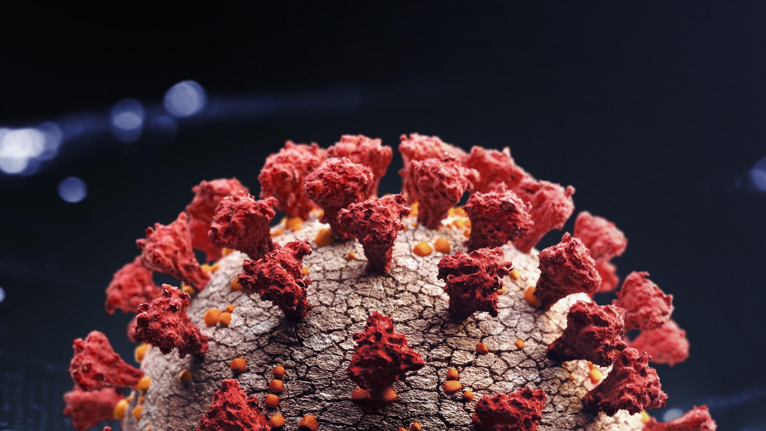 Graphic of the coronavirus