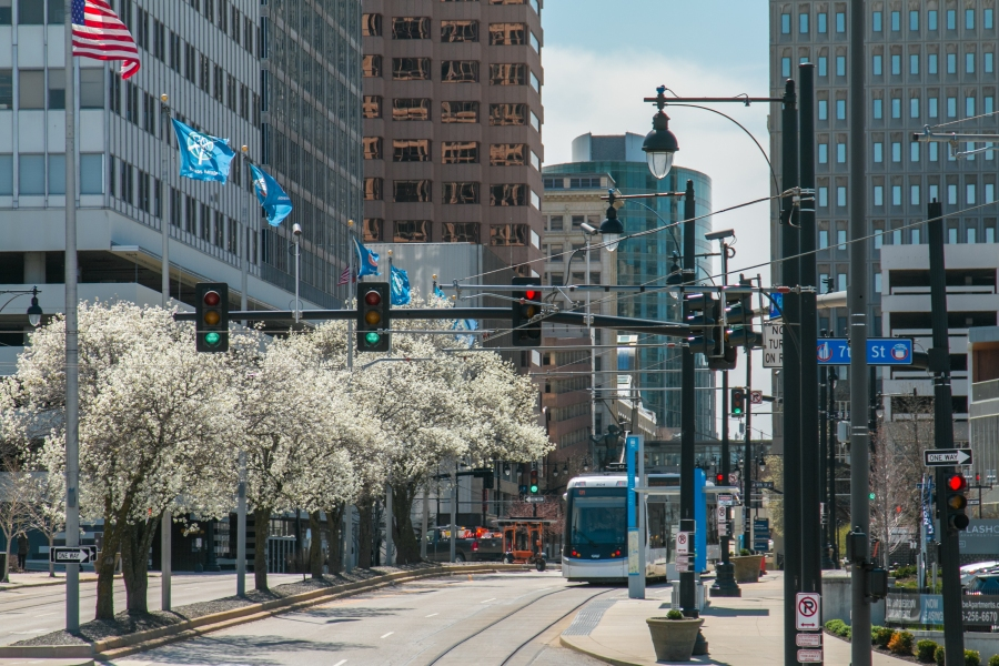Picture of blooming trees near Main and 7th.