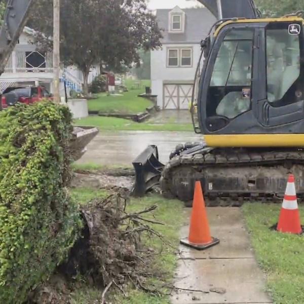 kck sinkhole repair trees ruined