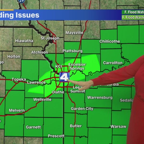 Picture of Michelle with Flash Flood Warning graphic